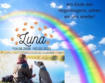 Regenbogen Brücke Pfotenabdruck Engel Flügel Haustier Hund Katze Charm Anhänger
