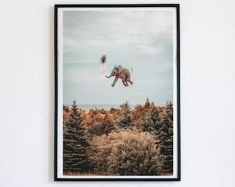 Photoshop Digital Art, Animal Illustration, Art Print