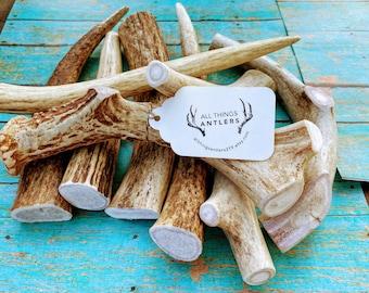 3 Pack Large whole Elk/deer antler chews! Real antler dog chews. Elk antler dog chews. Deer antler dog chews. 3 pack deal!