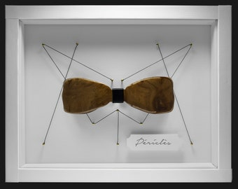 Wooden Butterfly Knot - Pericles