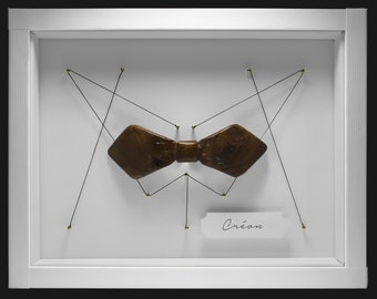 Butterfly Knot - Creon