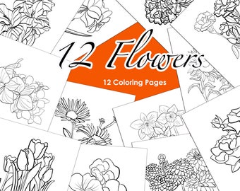 Floral Printable Adult Coloring Pages   Colouring for Women   12  Pages of Botanical Flower Drawings   Adult Coloring At Home Activity