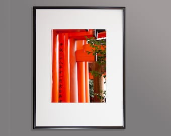Bold strong colourful image of Japan's Torri Gates, High quality print, Option of print only, mounted or framed. Available in various sizes