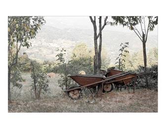 Photograph, High quality print, Two old wheel barrows photographed in Tuscany, Italy. available in various sizes