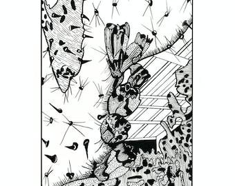 Black and white cactus illustration 8x10