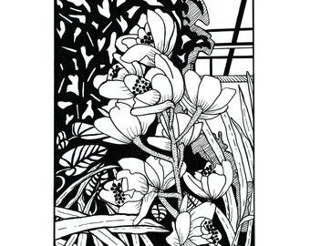 Black and white floral illustration 8x10