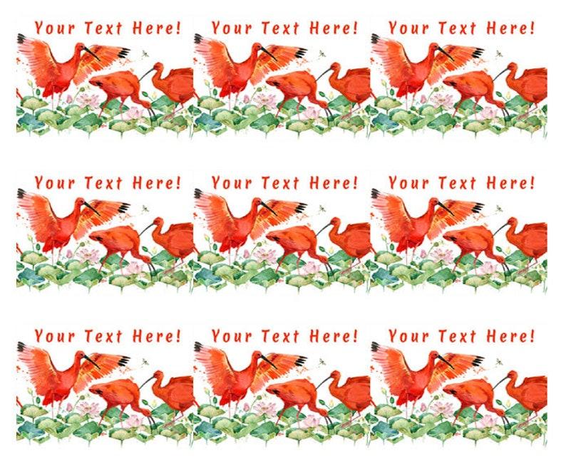 Edible Cake or Cupcake Topper Scarlet Ibis Tropical Bird