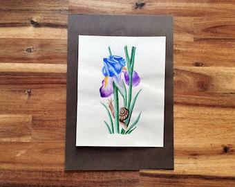 Illumination iris painting original artwork