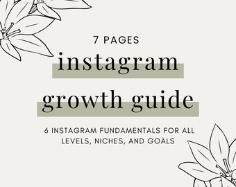 Instagram Growth Guide, Instagram E-book, Instagram Algorithm Book, Instagram Tips and Strategies, Instagram tutorial, Instagram Basics