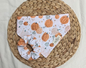Pumpkin Season - Reversible -Tie   Snap Bandana