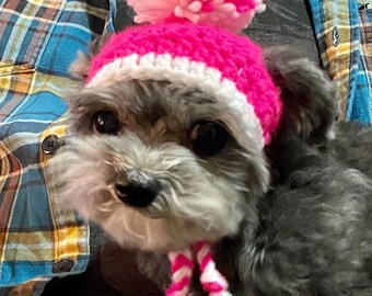 Dog and Cat Bobble Hat