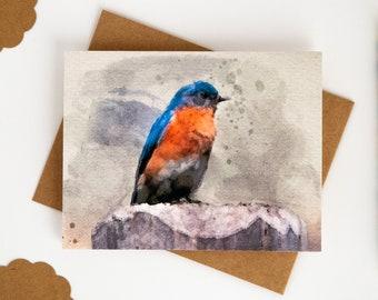 Bluebird Hummingbird Notecards 4 Pack: Meadowlark Cardinal