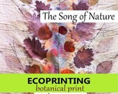 Digital Book-The Song of Nature-Ecoprinting & Natural Dye PDF Book-Reference Book