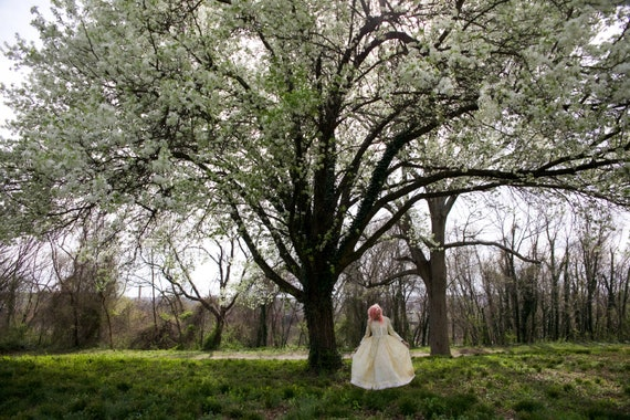 Gunne Sax inspired 70's prairie dress - image 8