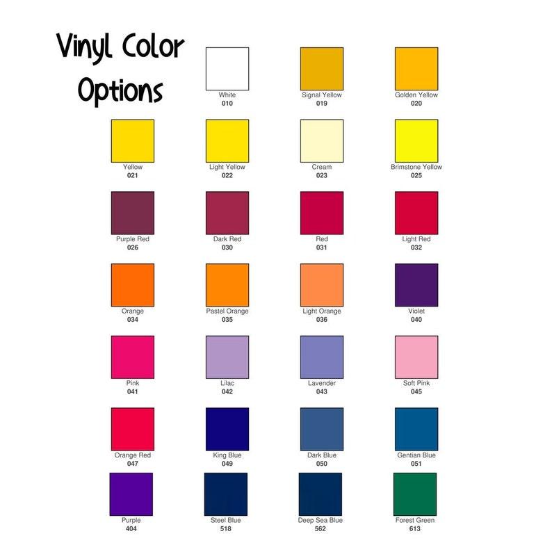 Skinny Tumbler Various Colors Available Senior 2021 20oz