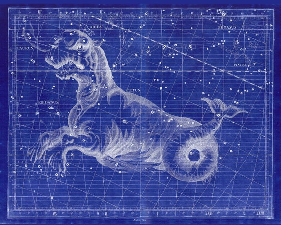 """Cetus, 1729,  Flamsteed auth. Cyanotype, celestial map on heavy cotton canvas, 50 x 70cm, 20 x 25"""" approx."""