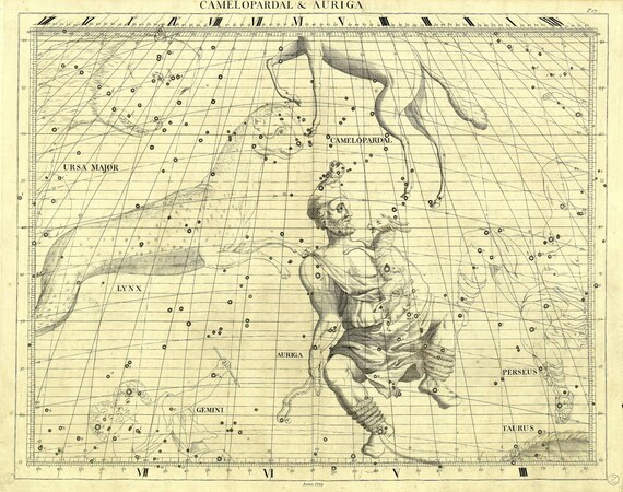 """Cameleopardal & Auriga, 1729, Flamsteed auth. , celestial map on heavy cotton canvas, 50 x 70cm, 20 x 25"""" approx."""