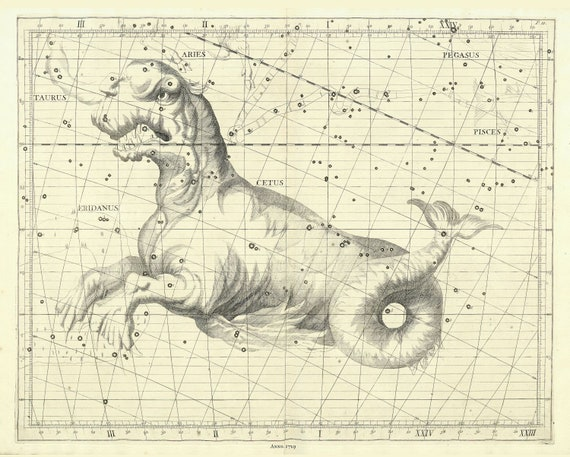 """Cetus, 1729, Flamsteed auth. , celestial map on heavy cotton canvas, 50 x 70cm, 20 x 25"""" approx."""