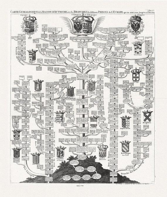 """Genealogy: Henri Chatelaine, Tom II. No. 7. Carte genealogique de la maison d'Autriche, 1718, map on heavy cotton canvas, 22x27"""" approx."""