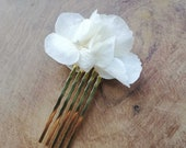 Stabilized flower pine, hairpin stabilized flowers, Dried white flower pin, wedding pine, gifts,
