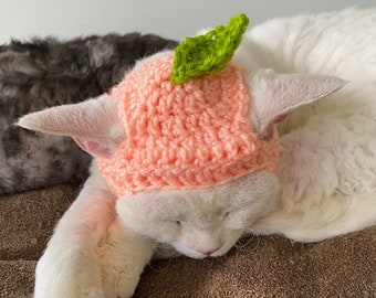 Crochet Peach Hat for Cats & Dogs - Cottagecore Kawaii Hat for Pets