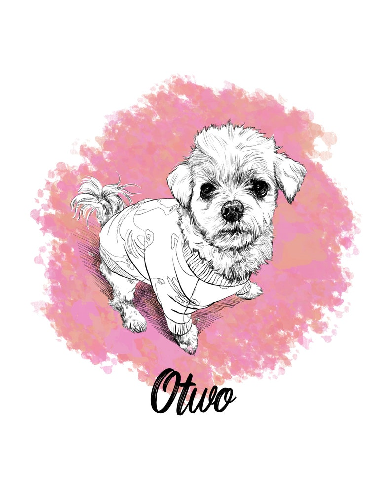 Digital Pet drawings Custom Pet portrait Custom drawing Drawing from photo Pet lover gift pet wall art Pet portrait Custom and Personalized