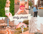 ANDY Preset for Lightroom