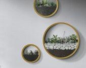 3pcs Modern Round Iron Wall Vase Home Living Room Restaurant Hanging Flower Pot Wall Decor Succulent Plant Planters Art Glass