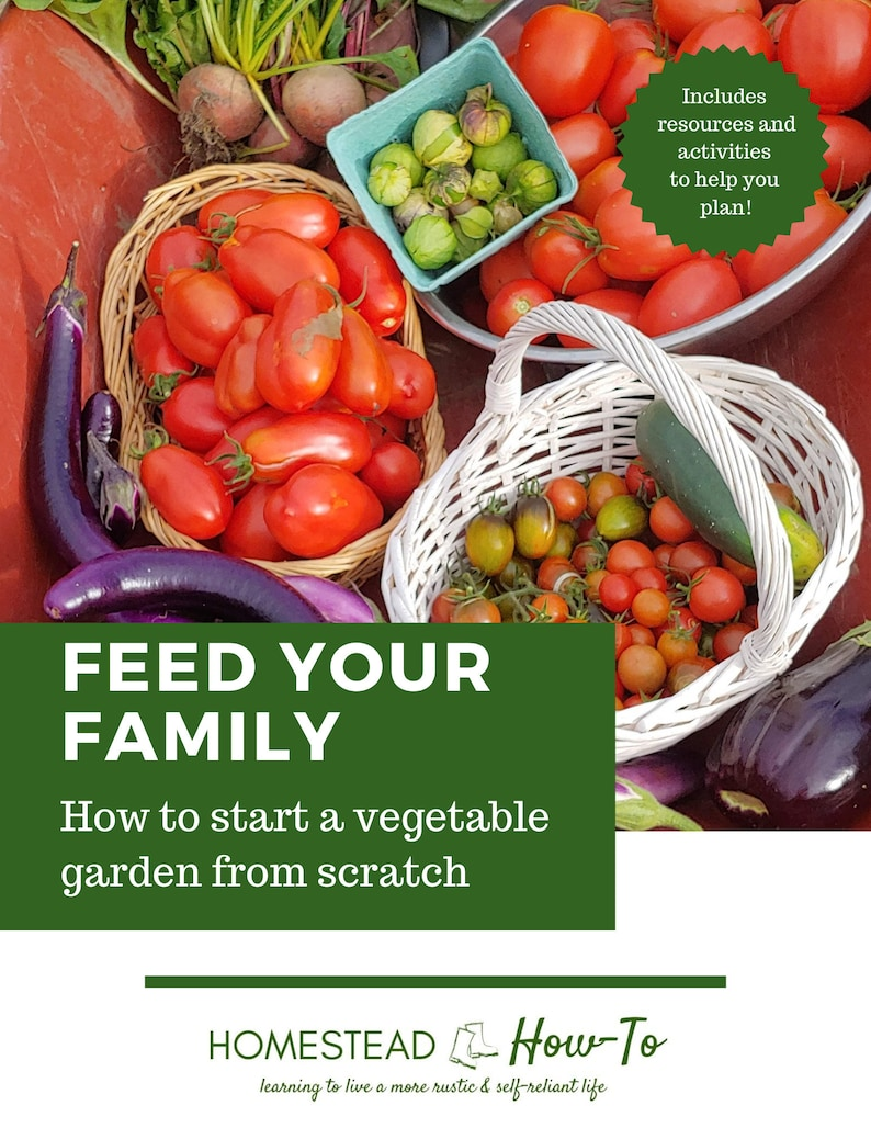 Feed your Family: How to Start a Vegetable Garden from Scratch image 0
