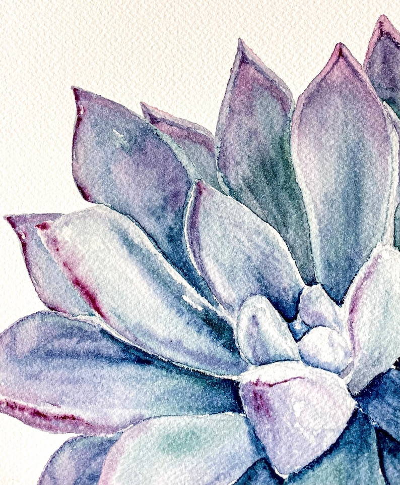 Watercolor Succulent Watercolor Print Succulent Art Print Succulent Art