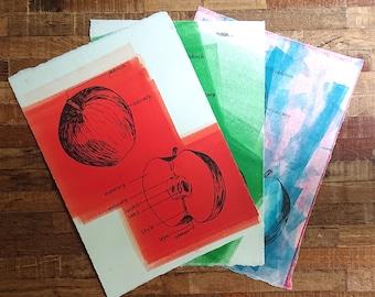 Apple Anatomy Monotype Prints