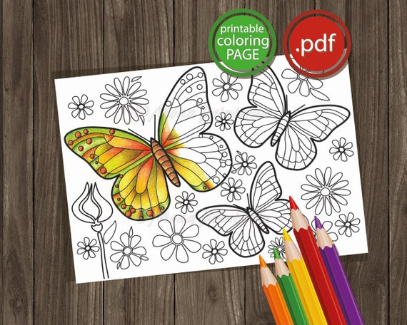 Butterflies Printable Coloring Page  Nature Activity Sheet