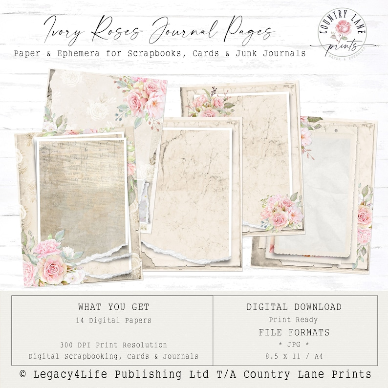 Ivory Rose  Journal Pages  Digital Papers 8.5 x 11  Vintage image 0