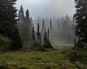 Landscape Fine Art Photography, Moody Golden Lakes, Nature, Pacific Northwest, Washington