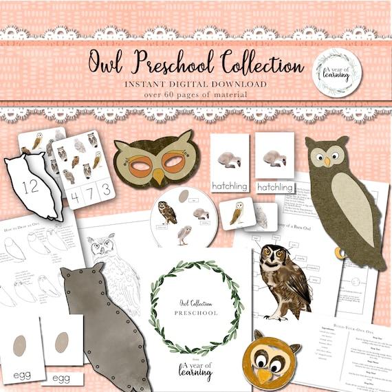 Owl Preschool Collection