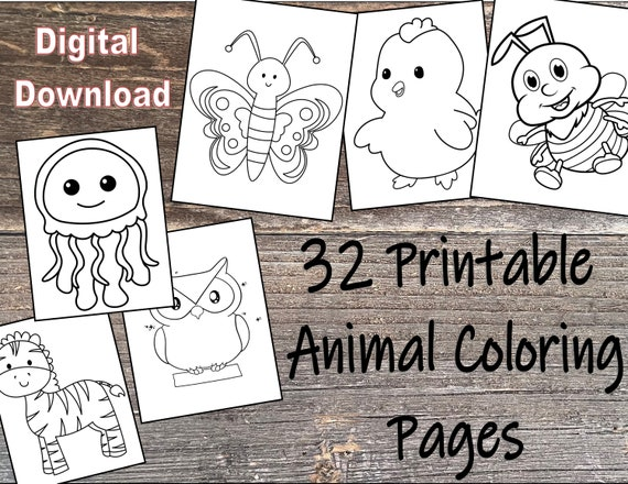 32 Animal Coloring Pages for Kids  Printable Digital