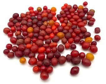 Antique Amber Faturan Beads