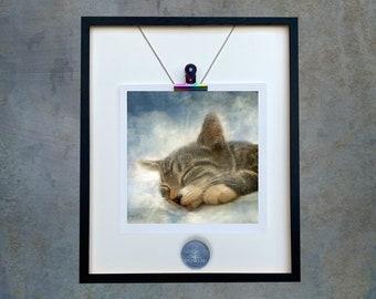 Cat/Tabby Cat/Bengal Cat/Sleeping Cat/Cat Unmounted Print/Cat/ Cat Sleeping/Pet Gift/Cat Owner/ Cat Lover/Cat PhotoArt/Dianne Owen