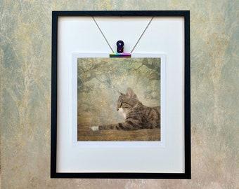 Cat/Tabby Cat/Bengal Cat/ Cat Unmounted Print/Cat Owner/ Cat in the Woods/Pet Gift/Cat Owner Card/ Cat Lover/Cat Photo Art Dianne Owen