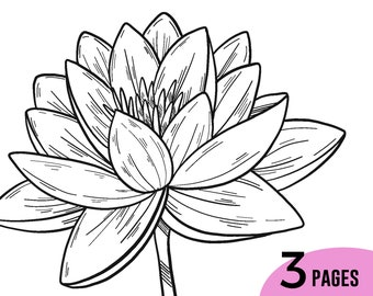 Lily Coloring Book, Flower Coloring Pages, Adult Coloring Book, Water Lilies Coloring Pages