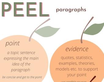 PEEL paragraphs poster