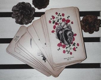 Tarot Reading | general , career, love, spiritual, month ahead, advice