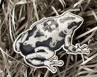 Poison dart frog (skull) sticker
