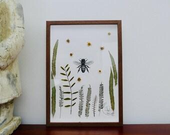 "HERBARIUM ORGINAL, BEE ""insects serie"", frame, A4, Botanical Home Decor"