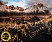 Iceland Landscape Vestrahorn Feathers - Archival Matte Print :  mountain