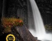 Svartifoss Waterfall Aluminum Print : waterfall Iceland
