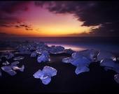 Iceland : Velvet Beach Aluminum Print