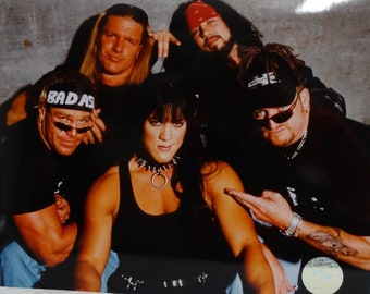 WWE 8 x 10 Inch Glossy Promo Photo Of  D-Generation X Rare and Collectable DX