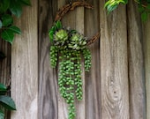 Succulent Moon Wreath