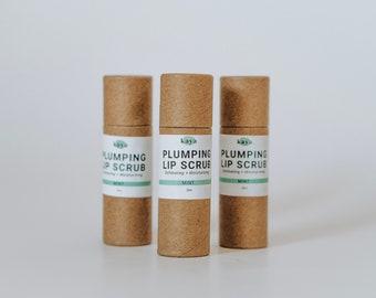 Plumping Lip Scrub | Volumizing, Exfoliating, Hydrating, Moisturizing, Zero Waste, Sugar Scrub